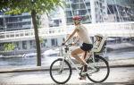 Рейтинг лучших велокресел для детей (ТОП-7) 2020