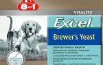 9 лучших витаминов для кошек и котов