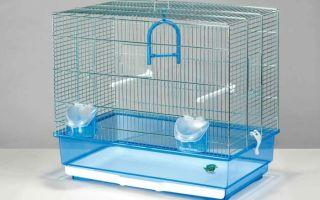 Лучшие клетки для попугаев