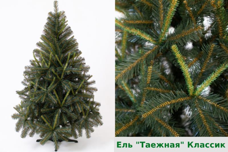Ель Таежная green trees